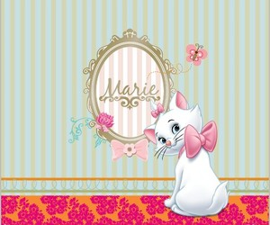 animal, aristocats, and cat image