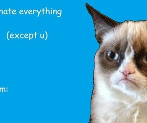 valentines card, valentine cards, and grumpy cat image