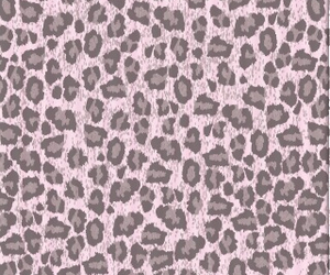 wallpaper, animal print, and leopard image
