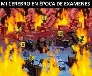 bob esponja, divertido, and examenes image