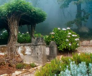 cottage, garden, and landscapes image