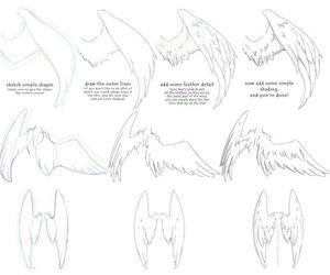 wings, draw, and drawing image