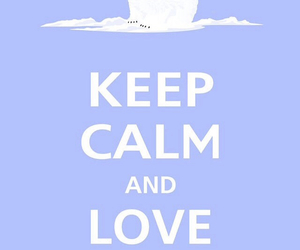 animal, keep calm, and polar bears image
