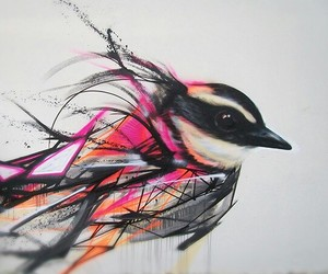 bird, art, and graffiti image