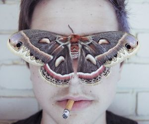 butterfly, boy, and cigarette image