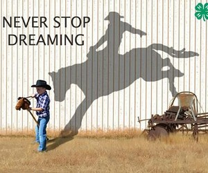 Dream and horse image
