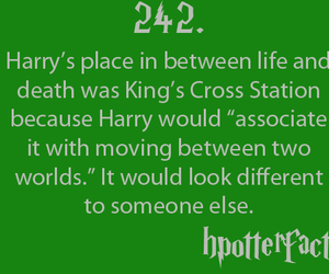 death, fact, and harry potter image