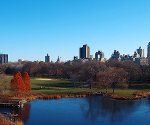 Central Park, ny, and united states image