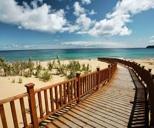 amazing, beach, and landscapes image