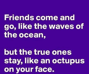 friends, funny, and quotes image