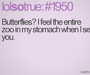 butterflies, funny, and lol image
