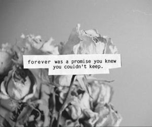 promise, flowers, and quote image