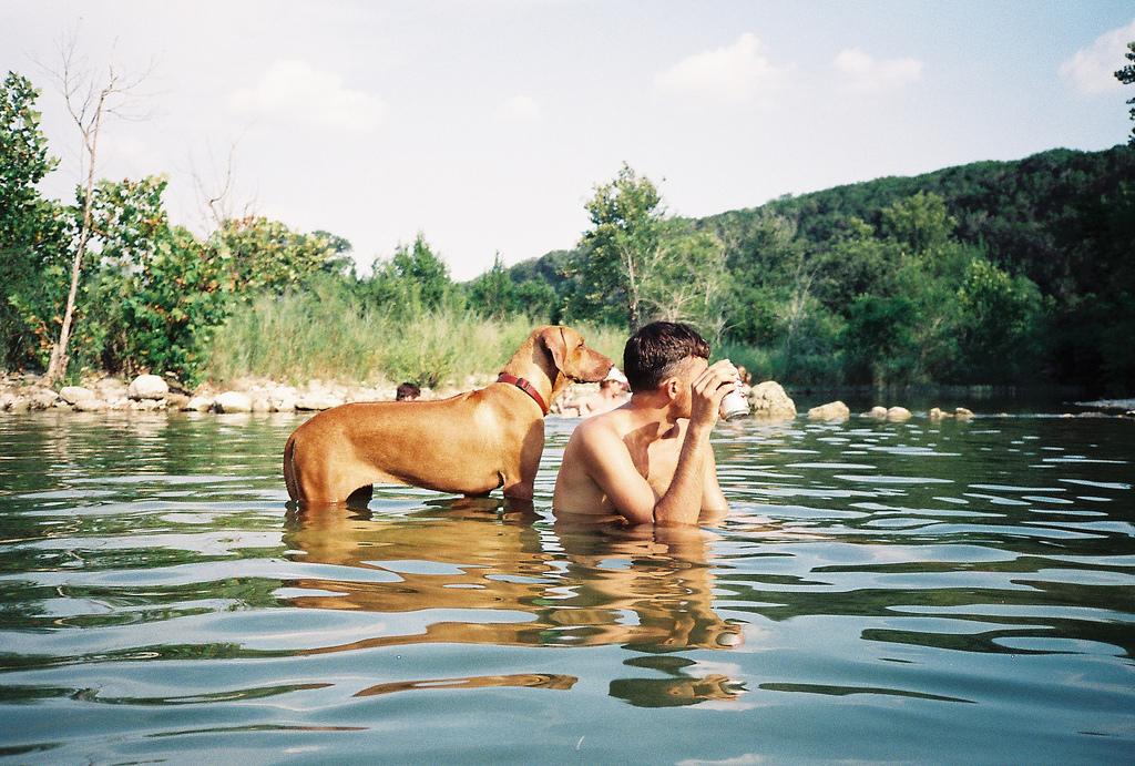 dog, friendship, and lake image