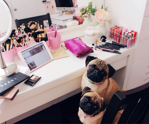 dog, makeup, and pug image