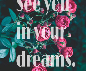dreams, flowers, and see image