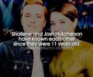 fact, Shailene Woodley, and josh hutcherson image