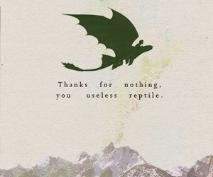 toothless, hiccup, and how to train your dragon image