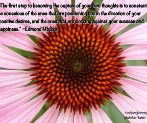 autonomy, desire, and happiness image
