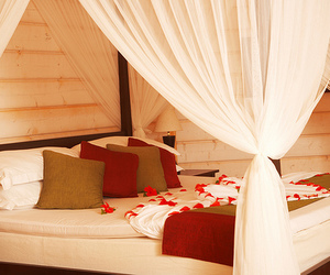 bed, luxury, and bedroom image