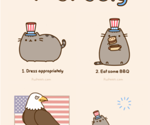cat, pusheen, and fireworks image