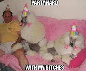 alone, funny, and party image