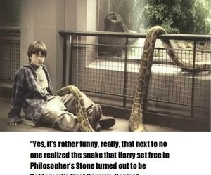 harry potter, not true, and nagini image