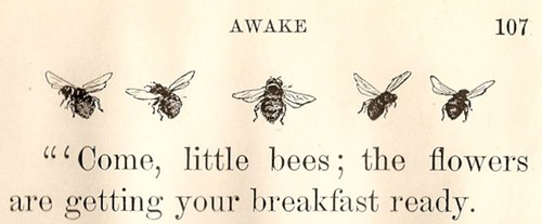 bees, breakfast, and text image