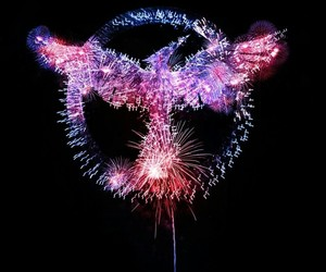mockingjay, fireworks, and the hunger games image