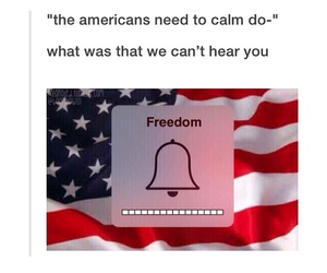 4th of july, freedom, and fuck you image