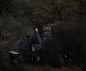house, forest, and castle image