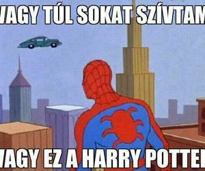 funny, harry potter, and hungarian image