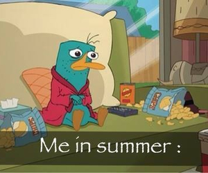 summer, me, and perry image