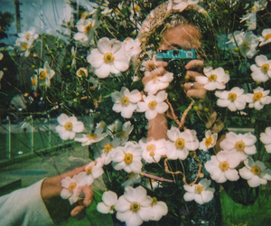 grunge and daisy flowers image