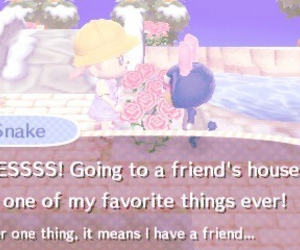 pastel, animal crossing, and cute image
