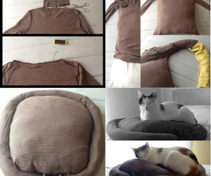 cat, diy, and kitty image