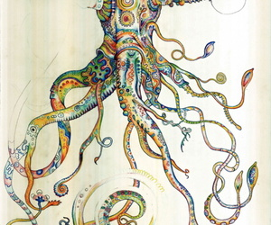 octopus, art, and illustration image