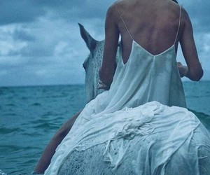 horse, sea, and ocean image