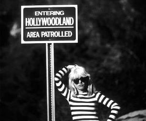 hollywood, vintage, and blondie image