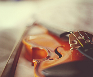 violin, music, and pretty image