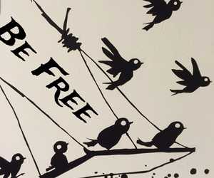 away, be free, and birds image