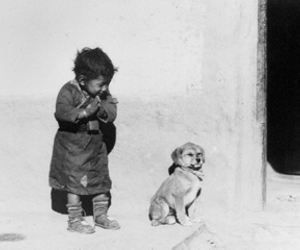 dog, love, and black and white image