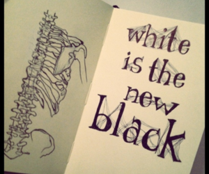 bones, draw, and journal image