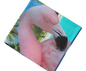 bandanas, birds, and bird image