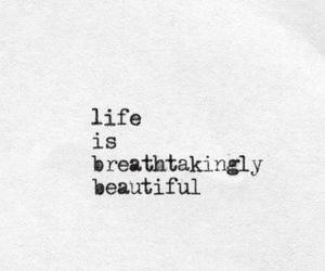 life, beautiful, and breathtaking image