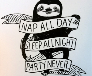 sleep, nap, and party image