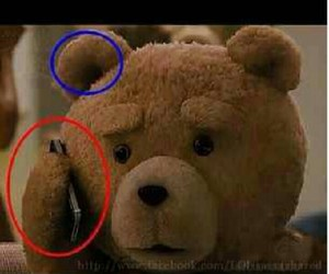 funny and TED image