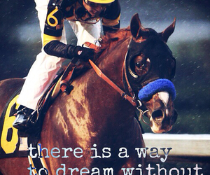 equestrian and equestrians image