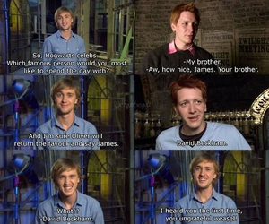 funny, tom felton, and harry potter image
