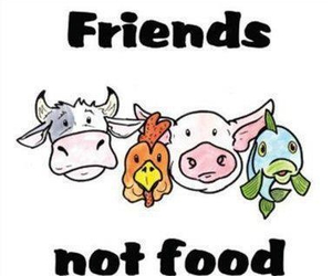 animal, vegan, and friends image