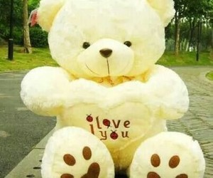 nounours and love you image
